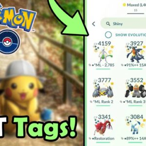 BEST Tags To Use & Avoid Using In Pokémon GO! (2020) | How To Tag Pokemon & Manage Your Storage!